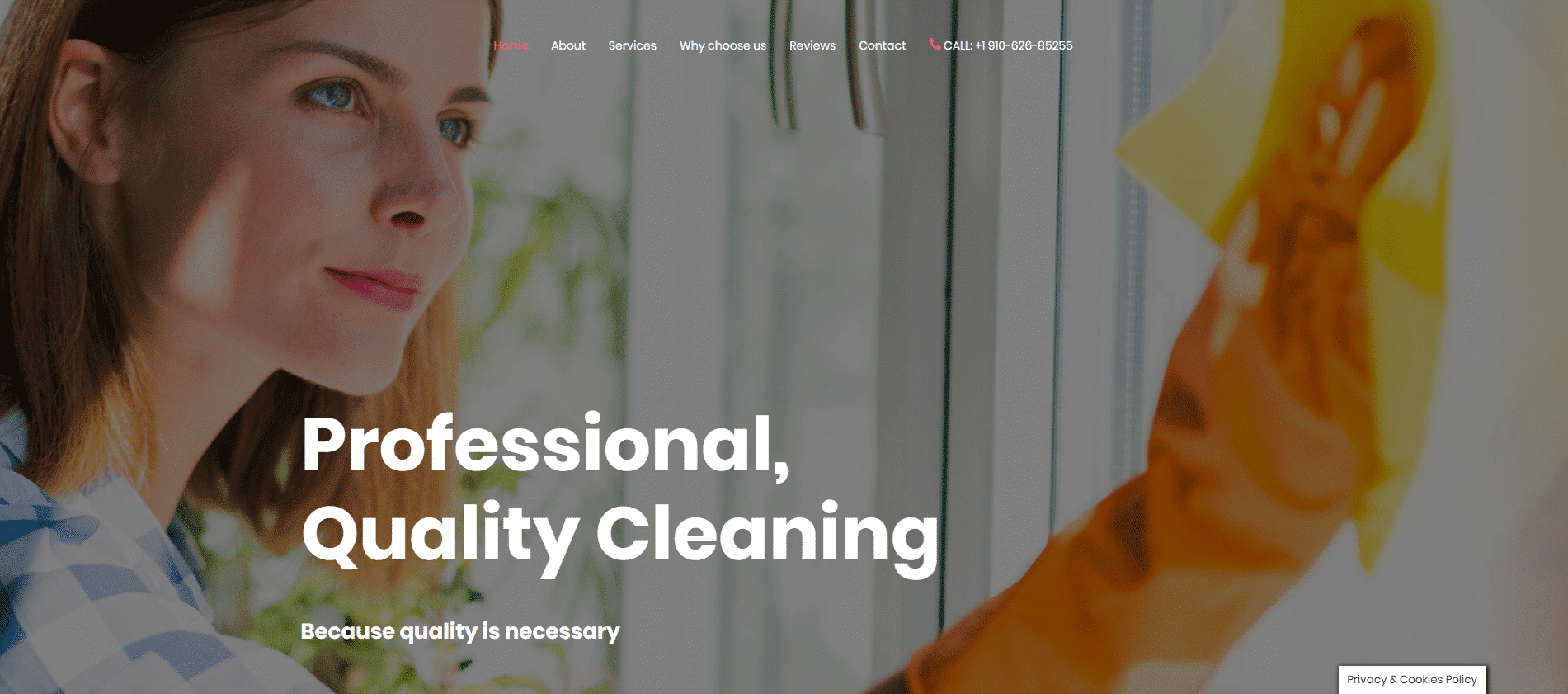 Cleaning Services DFY
